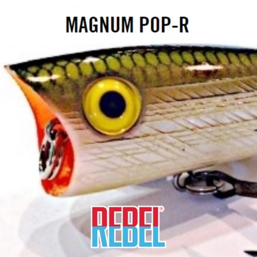 Amostra Rebel Magnum Pop-R