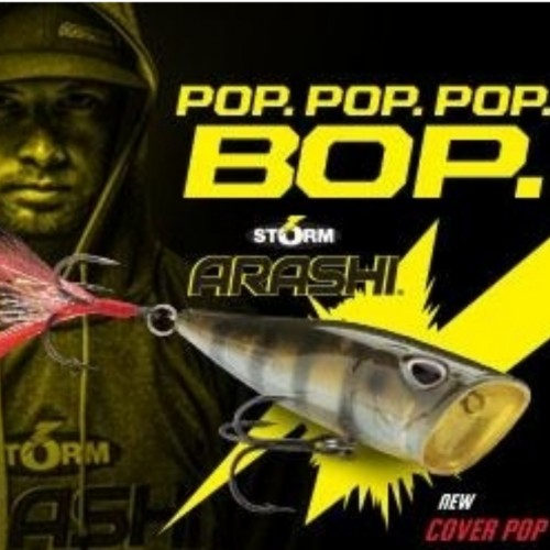 Storm Arashi Cover Pop