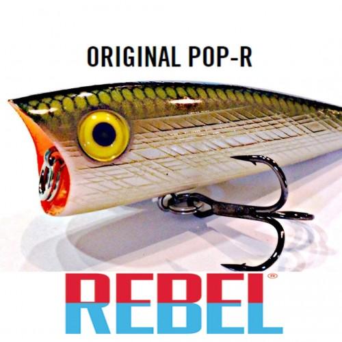 Amostra Rebel Pop-R