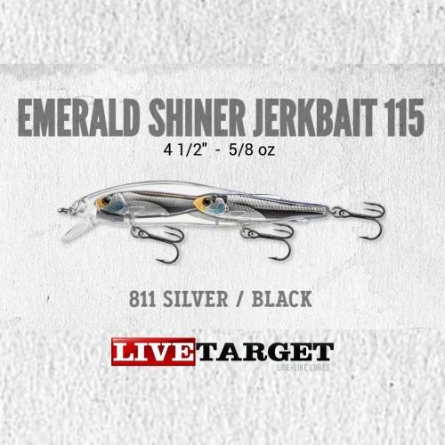 Amostra Livetarget BaitBall Emerald Shiner Jerkbait 115