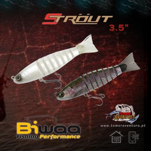 Amostra Biwaa Strout 3.5
