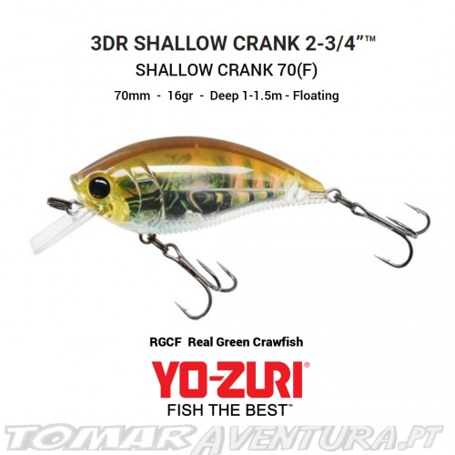 Yo-Zuri 3DR Shallow Crank 70 (F)