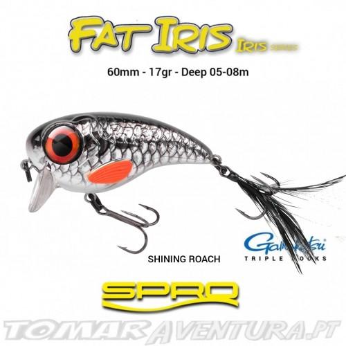 Spro Fat Iris 60