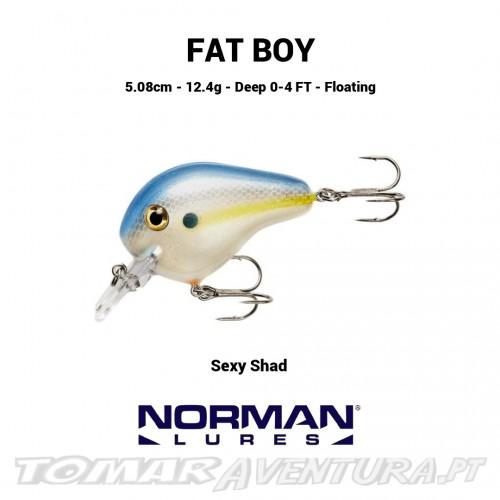 Norman Fat Boy 0-4 FT