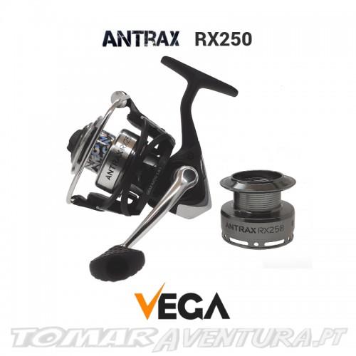 Vega Antrax  RX250
